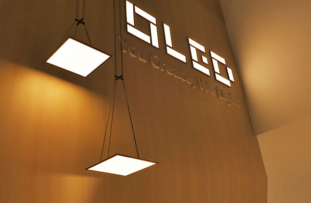 OLED Light Pendant and OLED Sinage with Slide Type Module
